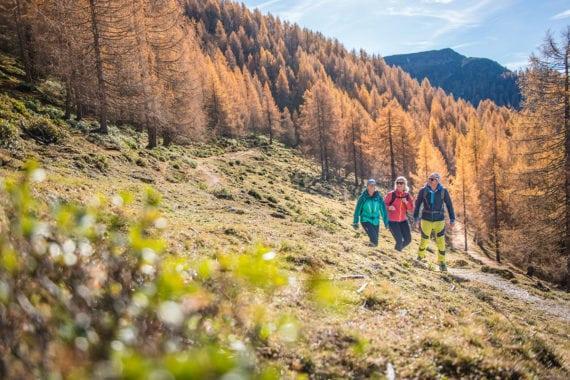 Wandern – Ferienwohnungen Eckart in Altenmarkt-Zauchensee
